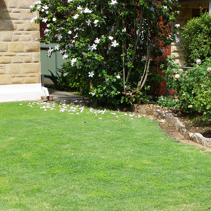 Sprinklers Irrigation Etc For Quality Residential